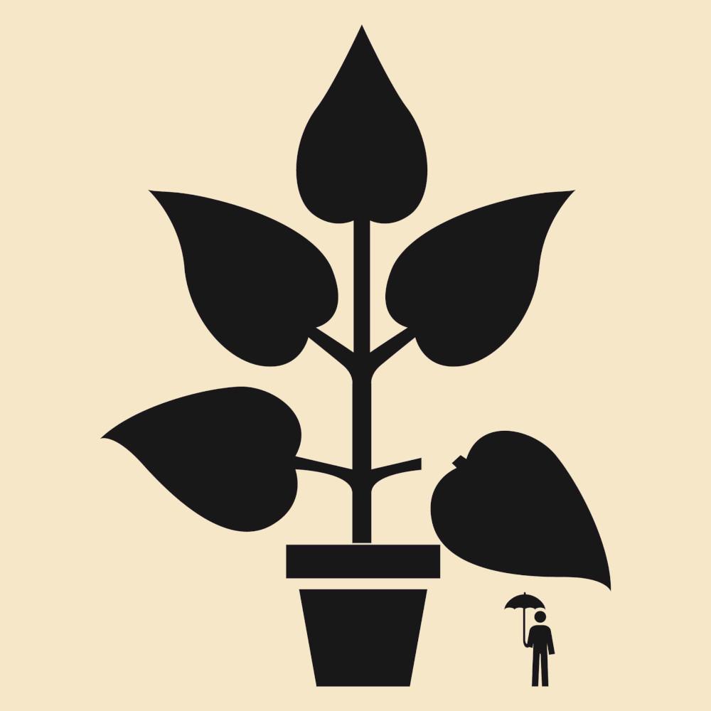 uomo e pianta